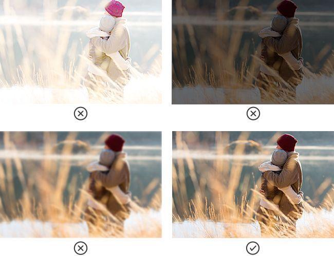 fotos que debe tener tu web