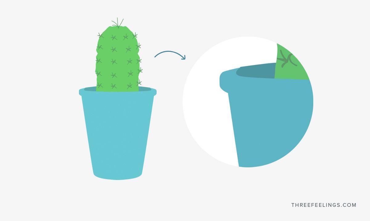 Diferencia entre vector y pixel - ventaja